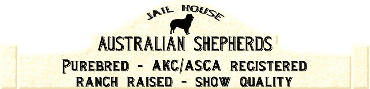 Australian Shepherds - Jailhouse Aussies